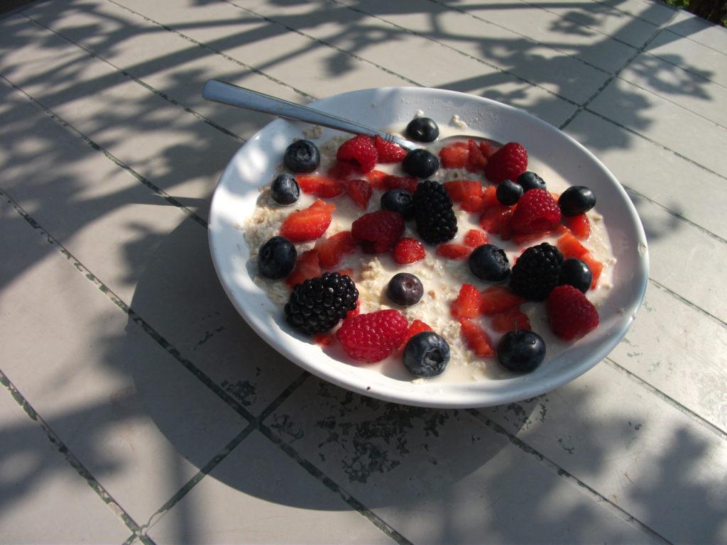 Welp Gezond ontbijt l Havermout met water en fruit l Plantaardig dieet HV-22